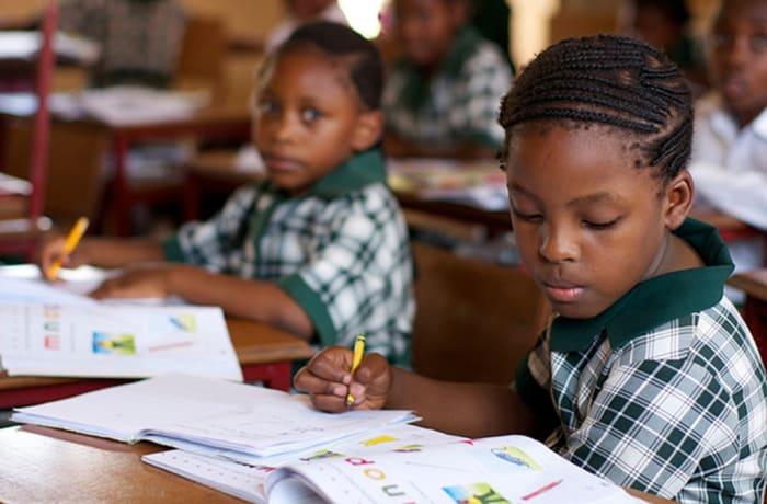 Primary School - Assessment fees