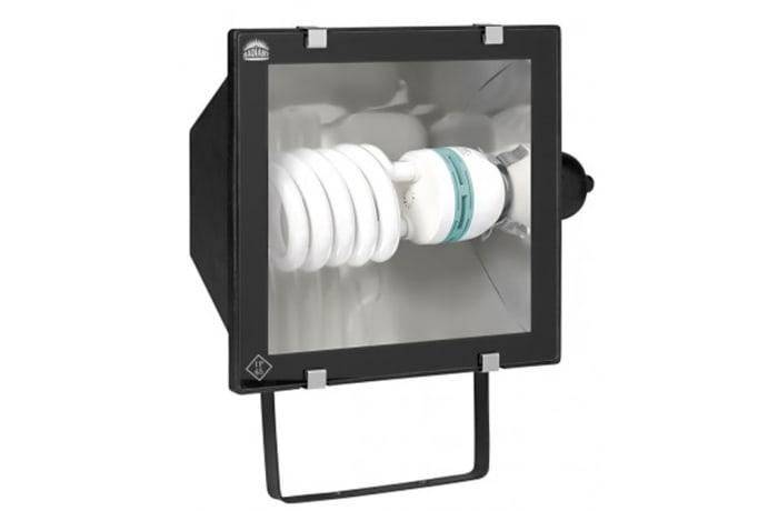 Flood Light -  LS176 DMC Plastic E40 ESL (Large)