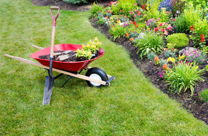 Landscaping/Gardening Maintenance
