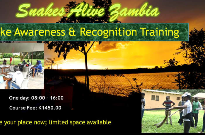 Snake Awareness and Recognition Training image