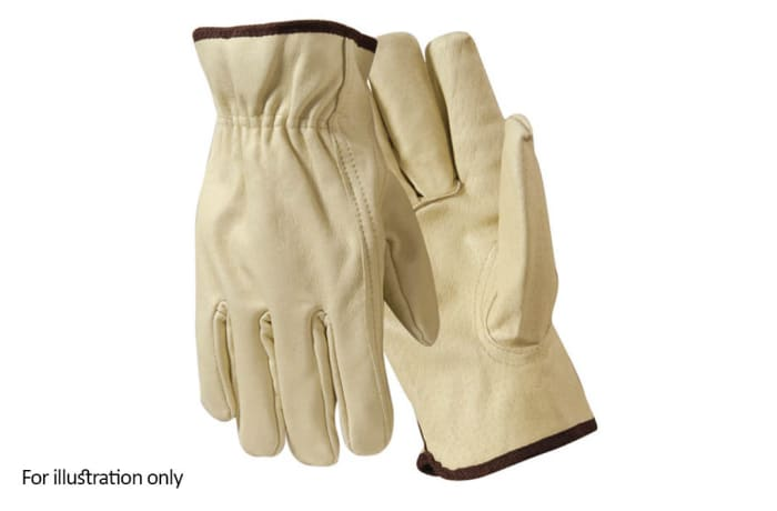 Hand Protection - Pig skin gloves