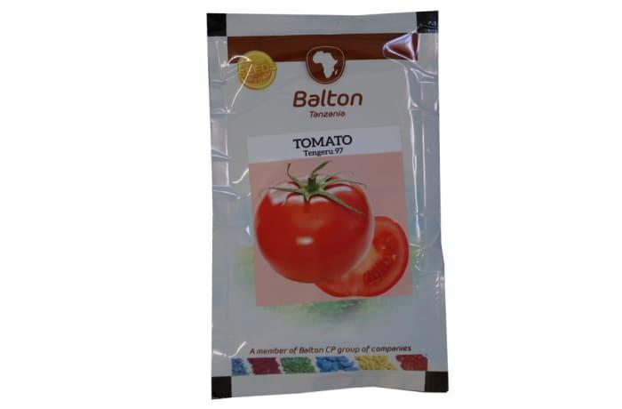 Tomato - Tengeru 97
