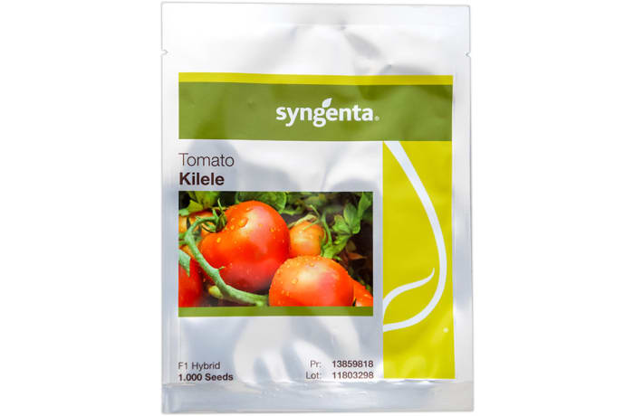 Kilele F1 Hybrid Tomato Seeds