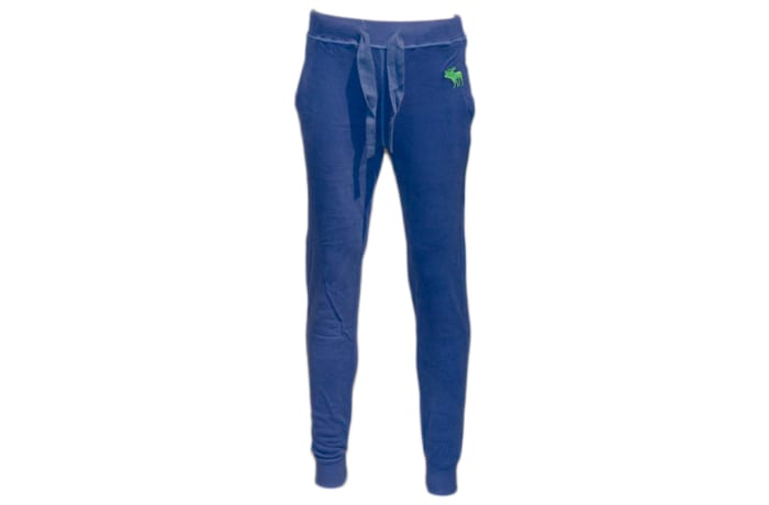 Abercrombie & Fitch Sweat Pants blue