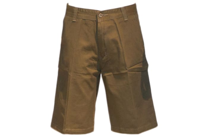Goodwin Shorts green