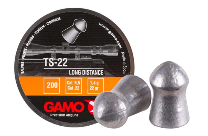 Gamo TS-22 in .22 Pellets