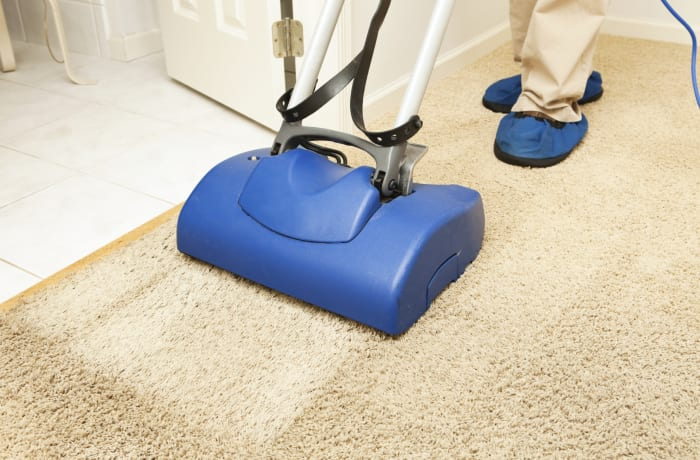 Carpet and Upholstery cleaning image