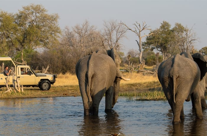 Offering a unique and memorable Zambian travel experience image