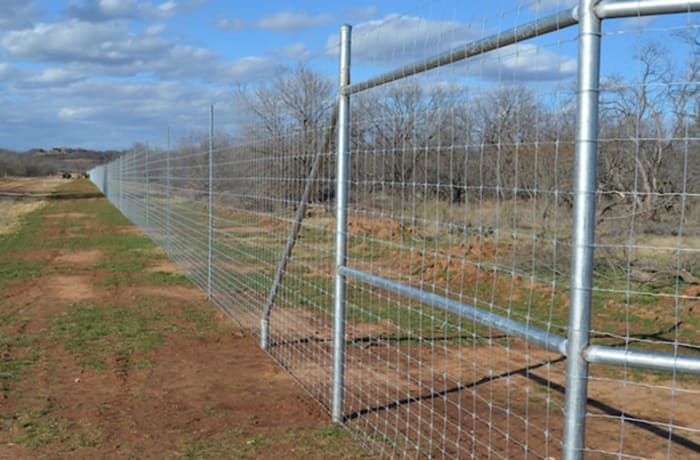 Special promotion on Game Fencing image