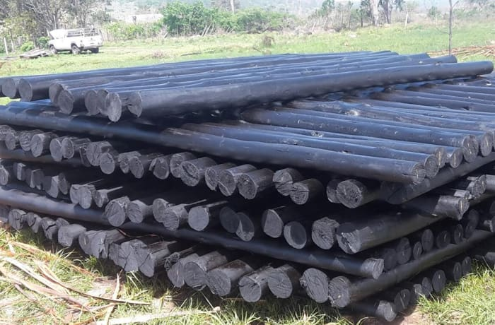Wooden gum poles