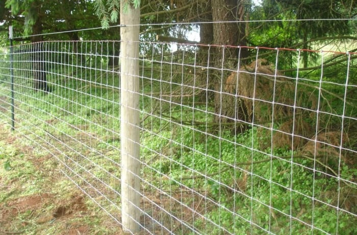 Game fence - 100m/roll x 205cm height