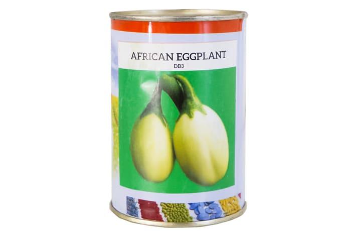 Db3  African Eggplant Seeds  image
