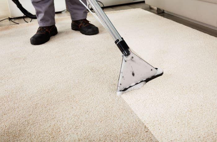 Carpet and Upholstery cleaning - 2