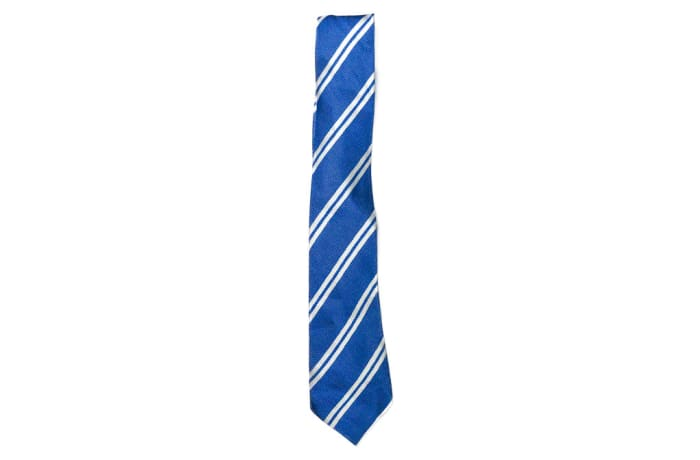 Light Blue with White Stripes Neck Tie  image