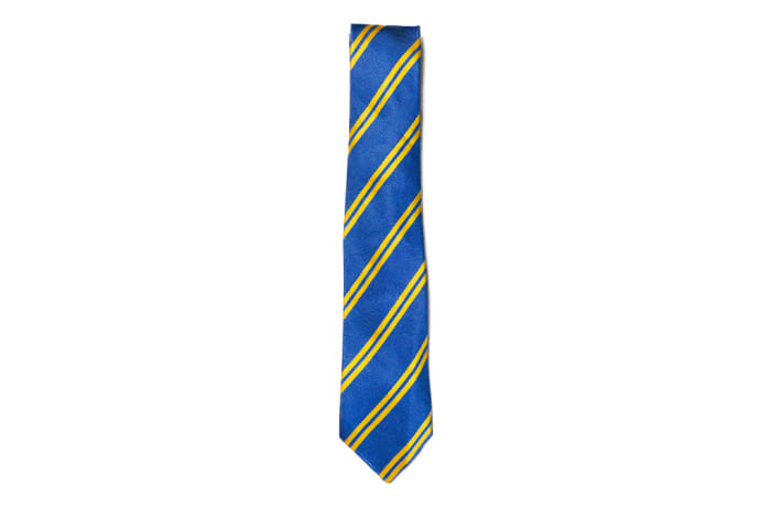 Royal Blue with Yellow Stripes Neck Tie  image