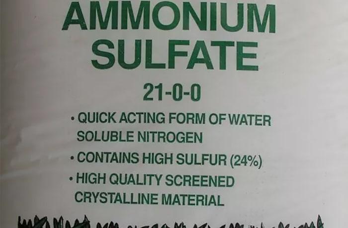 Ammonium Sulfate image