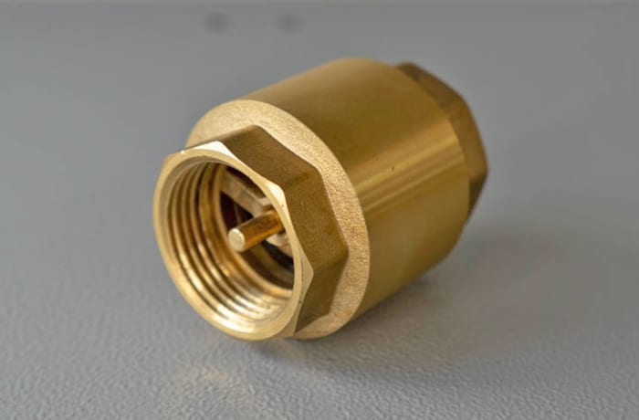 BrassCheck Valve 25 mm / 1 inch Double in image