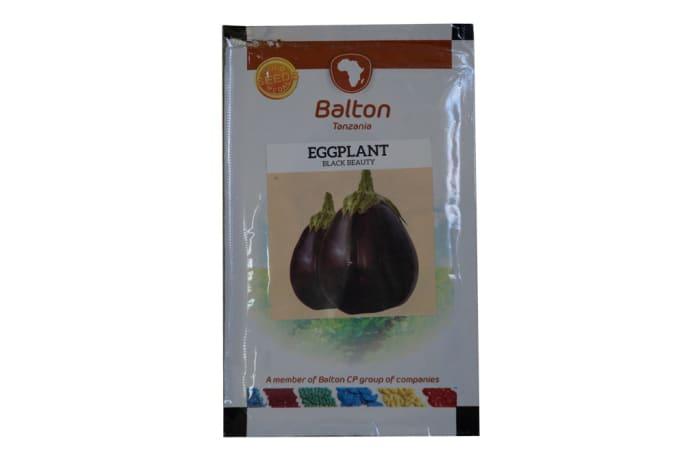 Eggplant - Black Beauty image