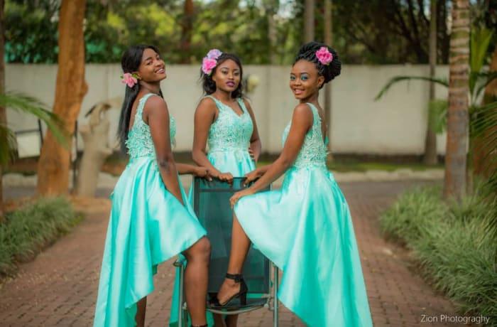 Light blue sleeveless bridesmaids wedding bridal dresses image