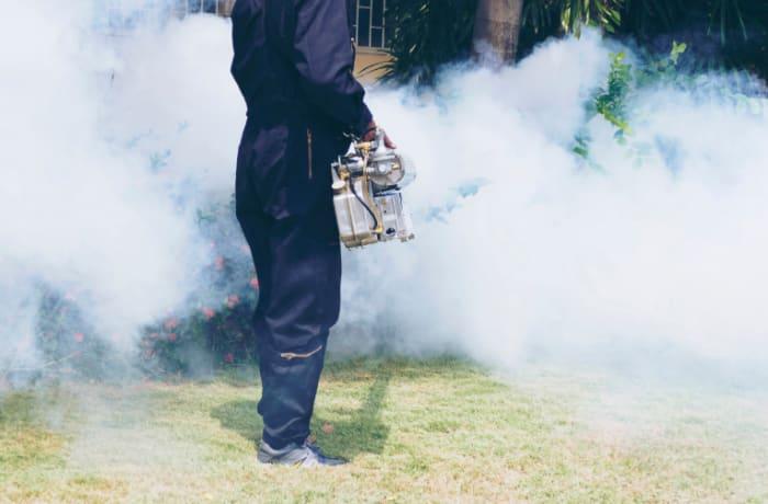 Fumigation image