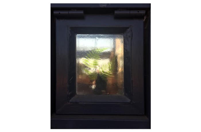 Glass pane in frame with fern leaves pattern image
