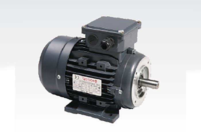 Single Phase Electric Motor image