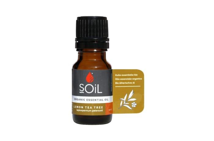 Lemon Tea Tree (Leptospermum Petersonii) organic Essential Oil 10ml  image