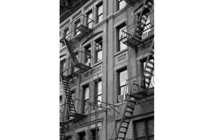 The Work - New York Post Coitus image