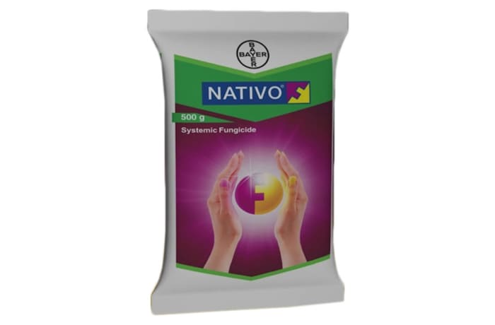 Nativo SC 300 50mls image
