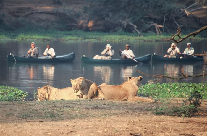 Livingstone Activities - Upper Zambezi Canoeing image