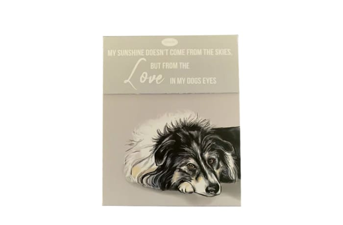 Paws For Thought Magnetic Notepad - My Sunshine Comes From the Love in My Dog Eyes image
