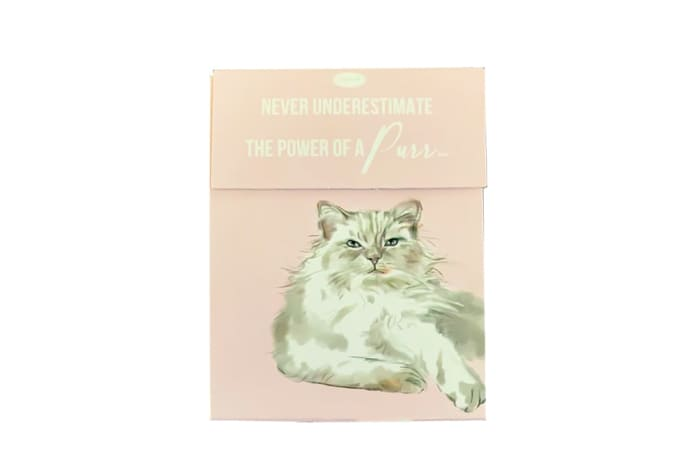 Paws For Thought Magnetic Notepad - Never Underestimate The Power of a Purr image