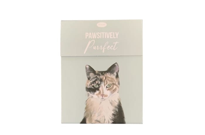Paws For Thought Magnetic Notepad - Pawsitively Purrfect image