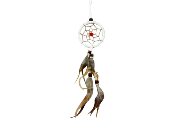 Wall Hanging  Dreamcatcher White Single Feather 6cm   image
