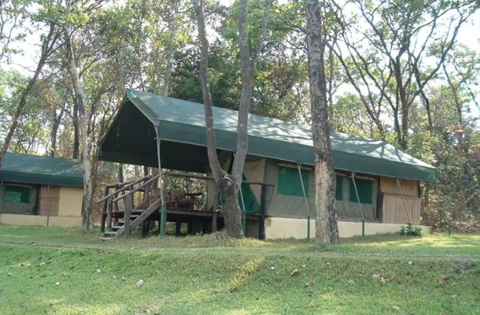 Safari camp - 0