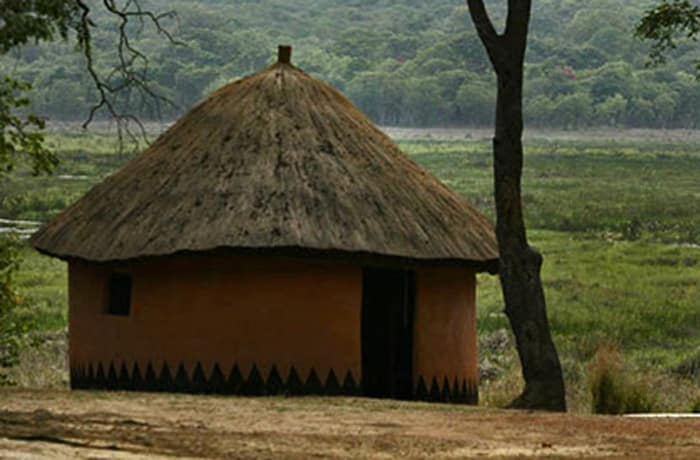Safari lodge - 1