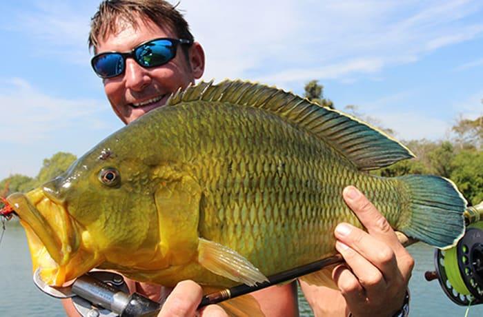 Angle Zambia image