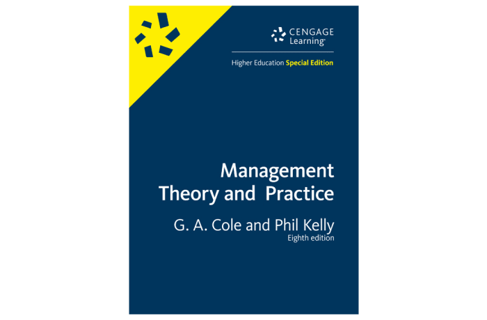 Management Theory and Practice 8th Edition image