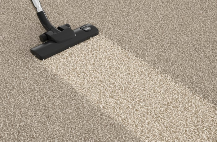 Carpet and Upholstery cleaning - 3