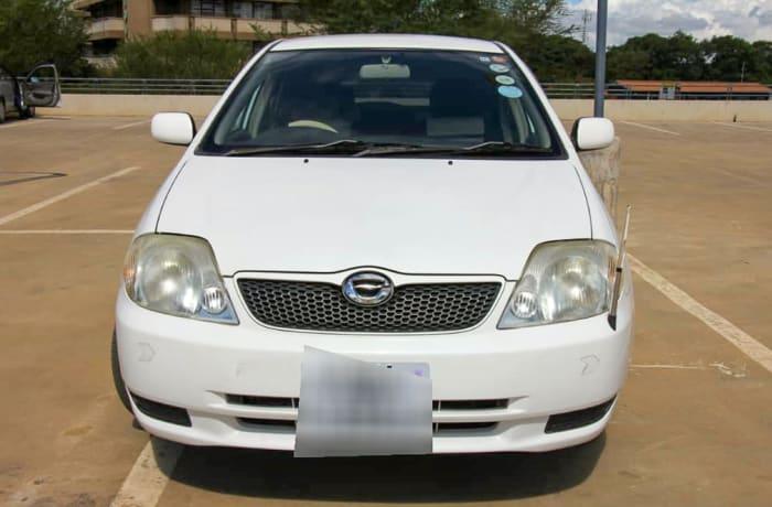 Car rentals - 2