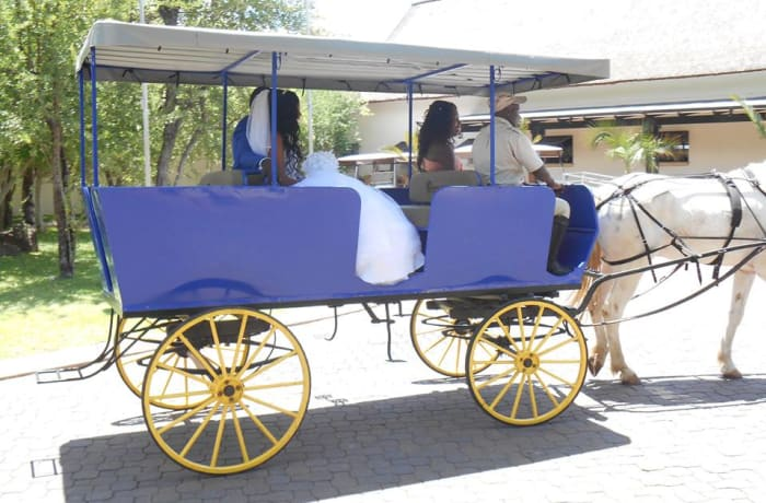 Horse back trails and carriage rides - 2