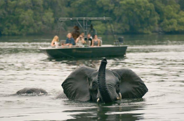 Victoria Falls river safaris - 0