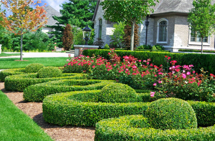 Landscaping and garden maintenance - 3