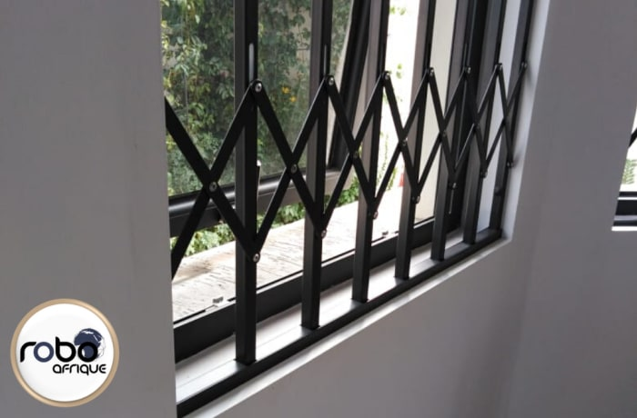 Trellis doors and burglar bars - 1