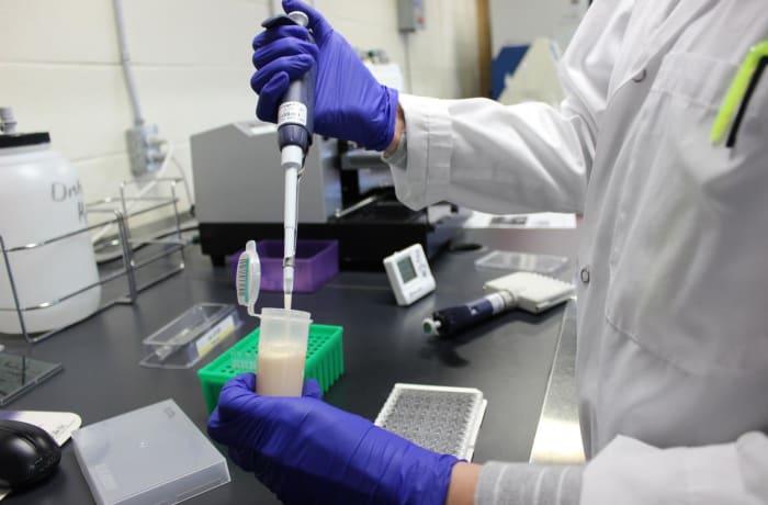 Animal feed and milk testing - 2
