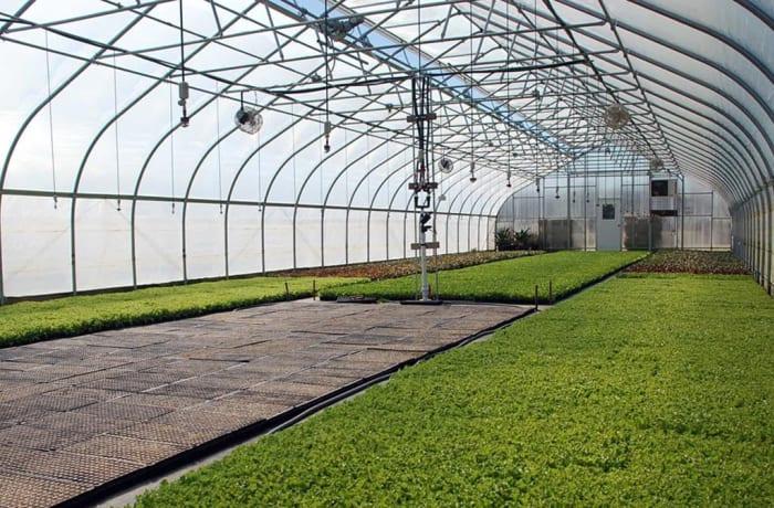 Greenhouses - 3