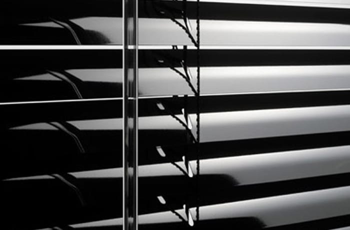 Turtle Blinds - 1