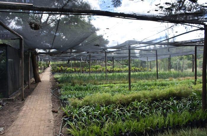 Irrigation equipment - 0