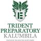 Trident Preparatory School Kalumbila logo