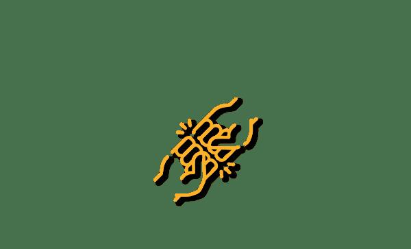 Championnat du Lundi au Dimanche